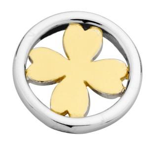 Enchanted element symbol friendship