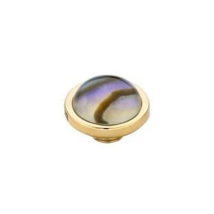 Melano Vivid zetting shell rond - Abalone