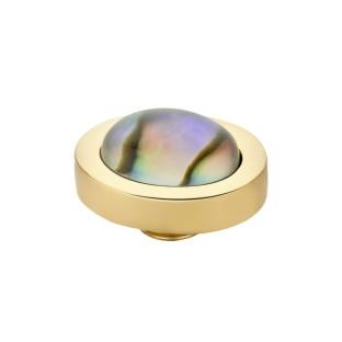 Melano Vivid zetting shell ovaal - Abalone