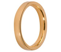 Melano Stainless Steel Friends ring gold glans
