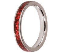Melano Stainless Steel Friends ring stainless steel light siam